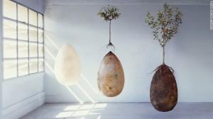 170424132824-capsula-mundi-three-eggs-exlarge-169
